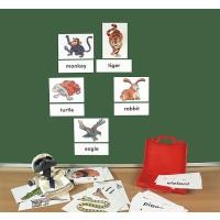 Spielerisch die Fremdsprache Englisch erlernen - 24 farbenkräftige Bildkarten,  24 Wortkarten, Rückseite mit Magneten