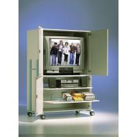 Die Abbildung zeigt Modell TV 220 RG VK, Dekor Grau 20, Metallteile RAL 5018 Türkis.